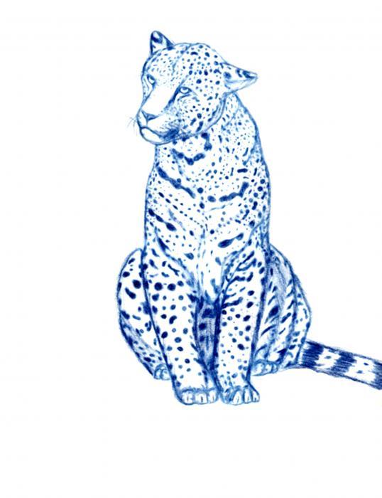 Indigo jaguar