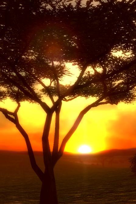 afrika sunset