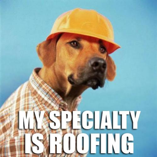 Roofing.