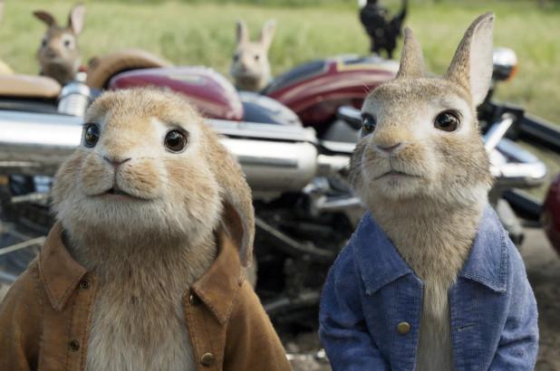 peter-rabbit-feature.jpg