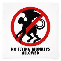FlyingMonkey9's Photo