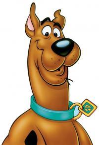 Scooby's Photo