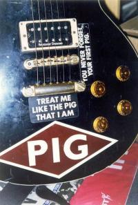 Pig's Photo