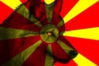 Macedon911's Photo