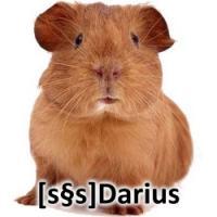 DariusWIND's Photo
